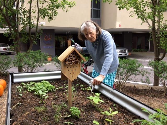 Gardening Programme hobbies