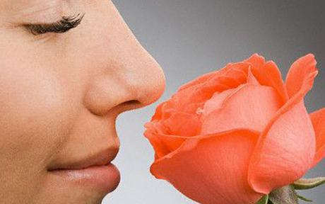 Dementia and the sense of smell